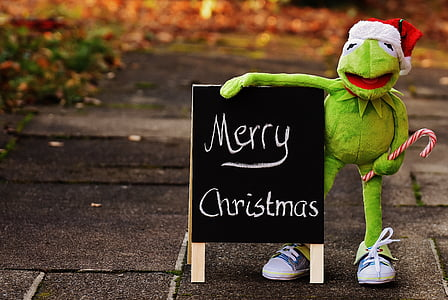 brown Hermit the Frog plush toy holding Merry Christmas signage