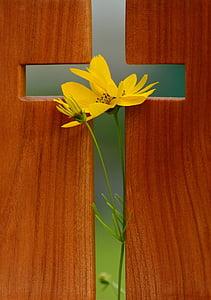 yellow flower in between of brown wooden board