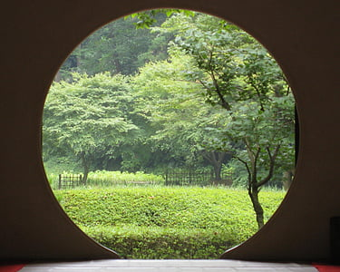 trees and bushes outside room with round door