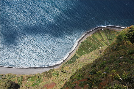aerial photography of sea beside road