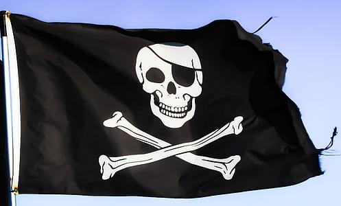 closeup photo of black and white pirate flag
