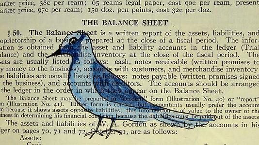 The Balance Sheet text
