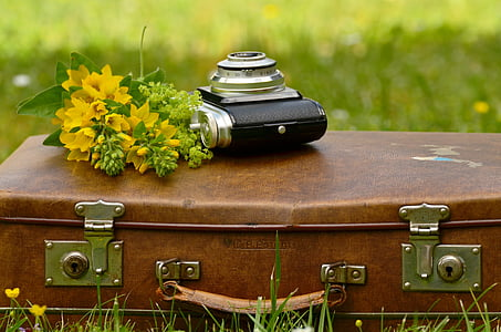 black and gray camera near yellow petaled flower on brown briefcase