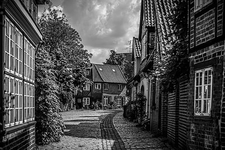 grayscale photography of empty pathway between houses