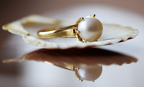 gold-colored ring with white pearl on a shell
