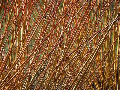 brown fibers