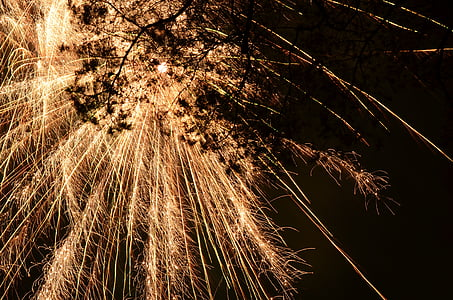 silhouette of tree branch under fireworks at nighttime