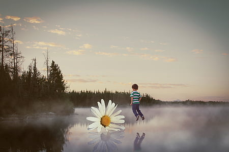 boy above body of water near flower illustration