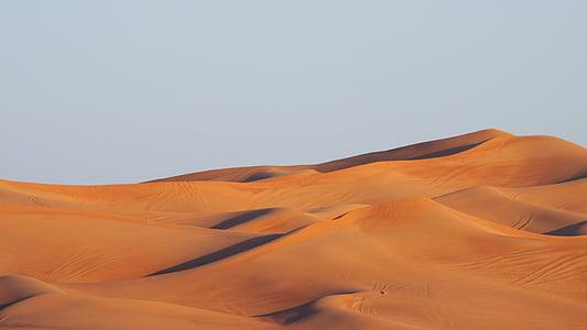 desert during daytime in landscape photography