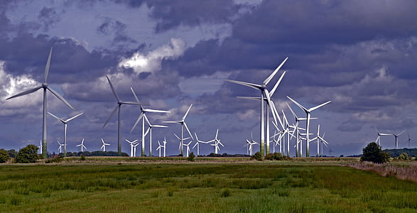 field of wind turbine