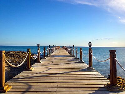 brown boardwalk during daytime