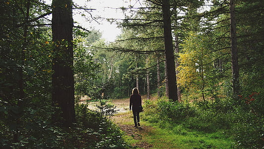 woman standing in between green leafed trees