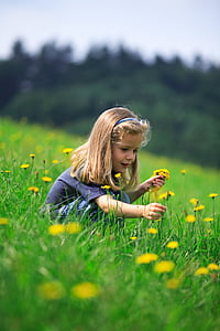girl picking yellow flowers surrounded by green grass under daytime sky