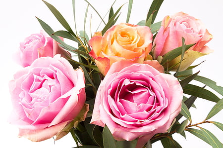 closeup photo of orange and pink roses in bloom