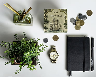 top view of pile of coins and black leather journal case and green leaf plant on white table top