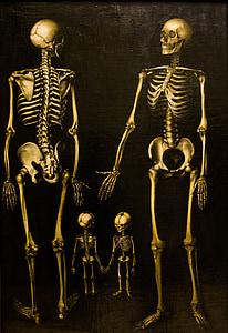 human skeleton painting