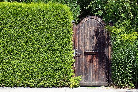 closed brown wooden door in between of grass wall