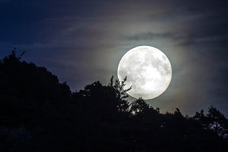 full moon during night