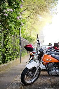 motorcycle, motor bike, vehicle, bike, transport