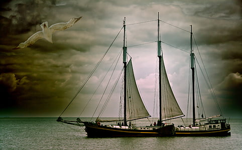 black and brown sailing ship on bodies of water