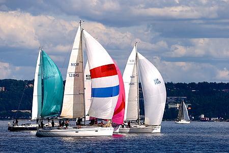 three white sailboats