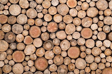 bunch of wood stump