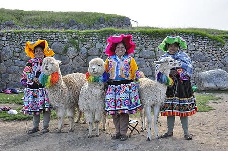 three woman with alpaca s