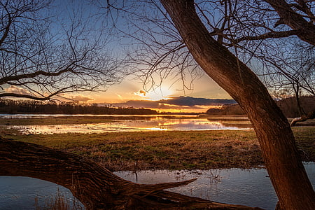 landscape photo of body of water against golden sun