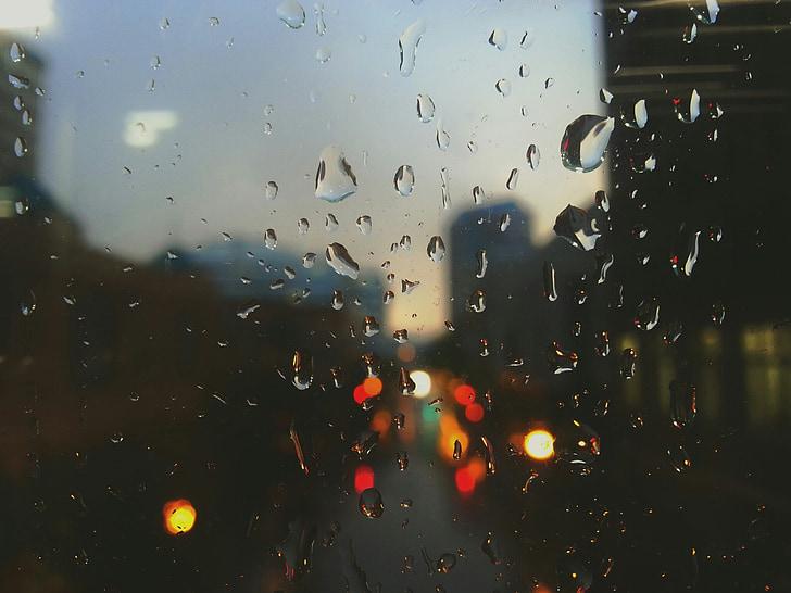 selective focus photography of rain drops