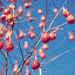 selective focus photograph of red bauble balls on branches