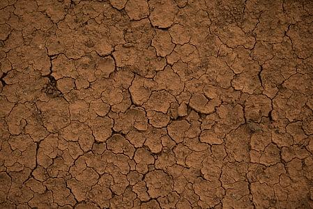 brown dried soil