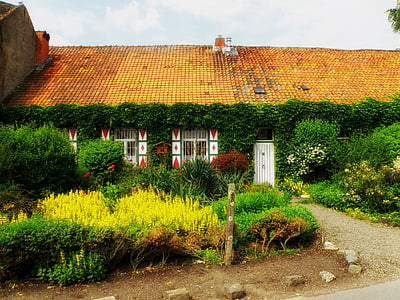 house surrounded by garden