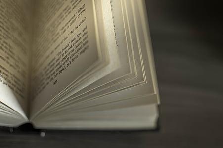 selective focus photography of opened bible