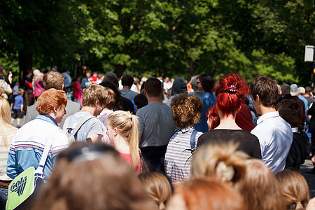 photo of people walking on pathway