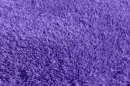 closeup photography of fleece purple textile