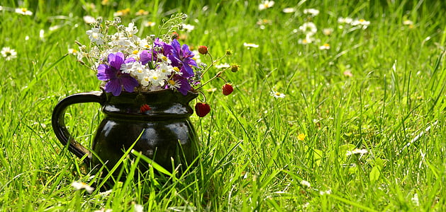 purple and white petaled flowers in black pitcher