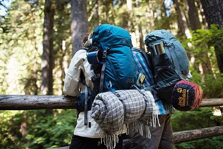 two men wearing blue hiking backpacks facing green leaf trees