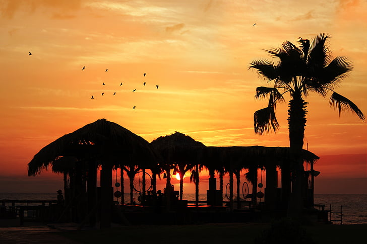 silhouette photo of beach cottage during sunset