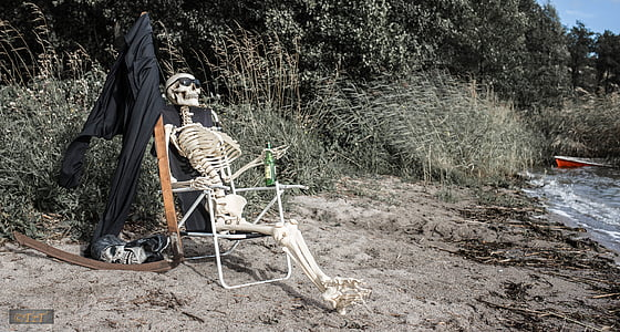 skeleton on lounge chair near body of water
