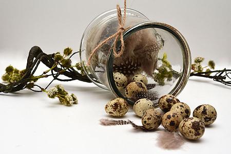 clear glass jar with quail eggs
