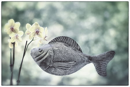 fish, metal fish, orchid, swim, flower, swimmer