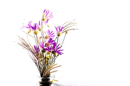 purple flowers arrangement