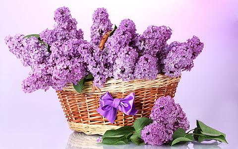 basket of lavander flowers