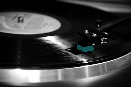 closeup photography of black vinyl record