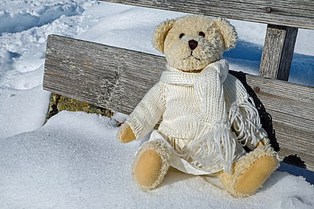 brown bear plush toy on snow covered floor during daytime