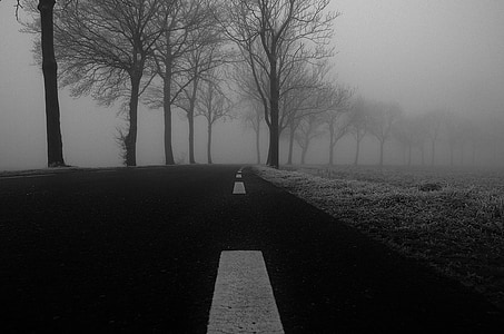 grayscale photo of foggy road