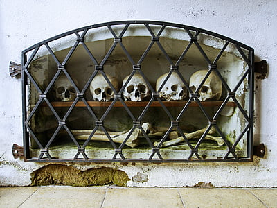 white skulls and bones inside shelf rack on wall with black metal grill cover