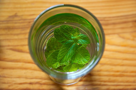 clear drinking glass with green leaf inside