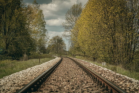 train rail surrounded by green trees