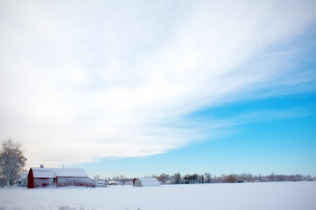 photo of white barn covered by snow